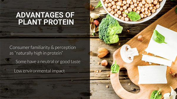 What's driving plant proteins' success?